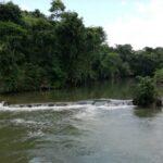 En el mundo solo 17% de ríos de caudal libre son protegidos