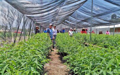 Tlaxcala impulsará trabajos en beneficio del medioambiente