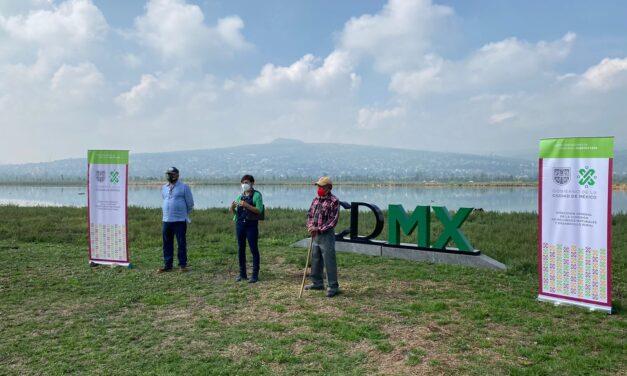 Comenzó la rehabilitación de humedad en  Xochimilco y Tláhuac