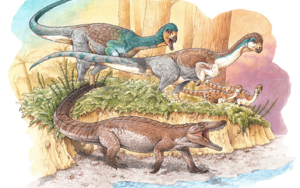Científicos descubrieron en Chile al «abuelo» de cocodrilos