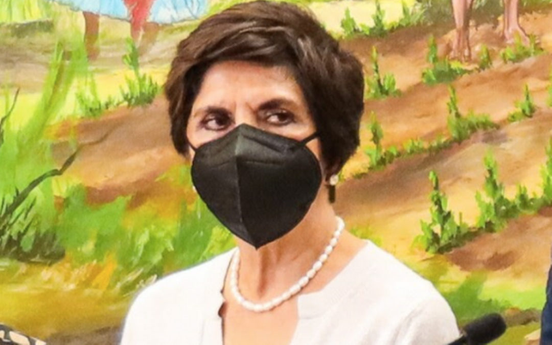 Congreso nombra a Mary Álvarez Hurtado como titular de la SFP