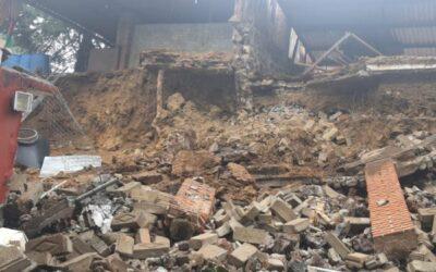 Mueren varios perritos refugiados en Xochimilco por derrumbe