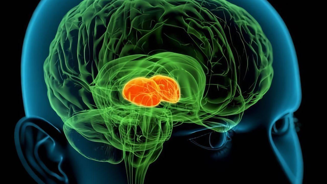 Foto: Deutsches Zentrum für Neurodegenerative Erkrankungen