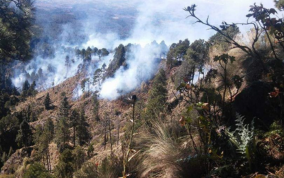 Edoméx es el primer lugar en incendios forestales
