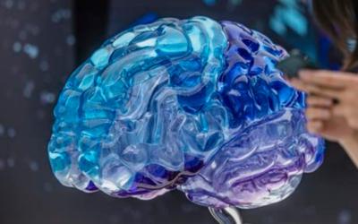 Científica de Cambridge busca modificar recuerdos