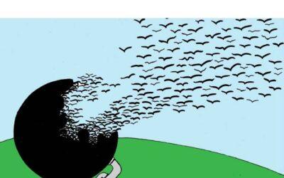 Ante la pandemia, hagamos volar la paz
